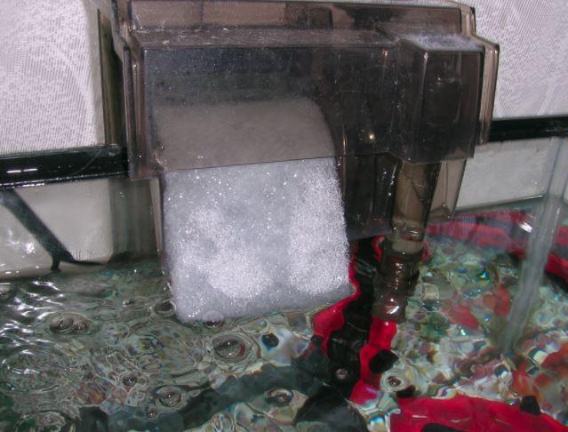 外掛け式フィルターの楽水温を静音化させるために、吐水口にウールマットを挟み込んで、水流を弱くしている画像