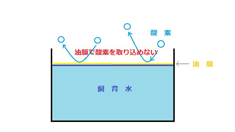 水を張った水槽の図があります。水面の上には油膜が張っており、空気中の酸素が油膜により水中に取り込まれることがありません。それを図で表現しています。