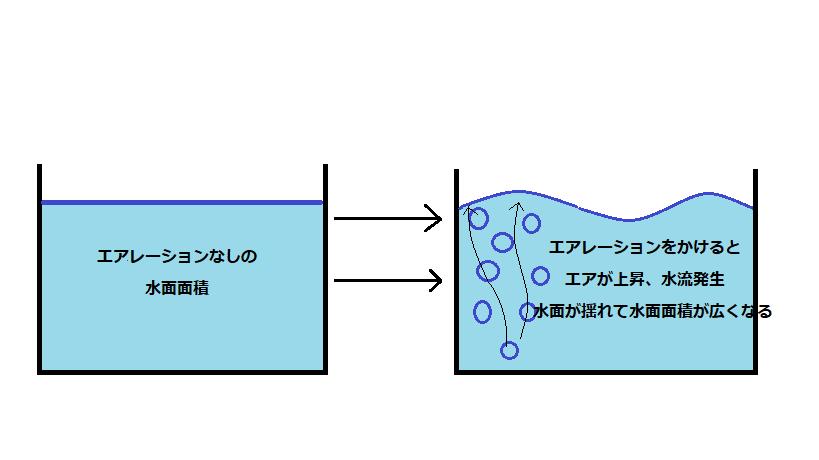 左には水面が揺れていない水槽の図があります。右側にはエアレーションをかけることで水が波立ち、水面と空気が触れる面積が広くなっています。