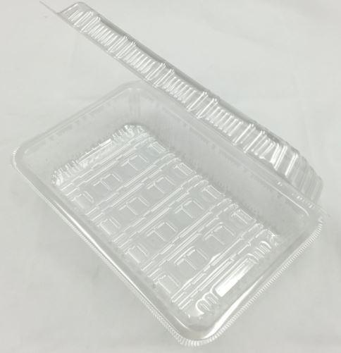 ブラインシュリンプを孵化させるためのタッパーの画像です。透明なタッパーがあります。